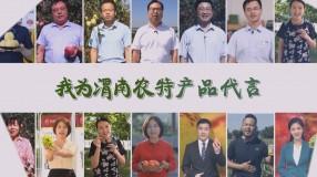 """""""我们""""为渭南农特产品代言 打call助脱贫"""
