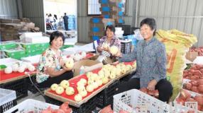 渭南脱贫攻坚成绩单:贫困发生率从24.08%下降到0.84%