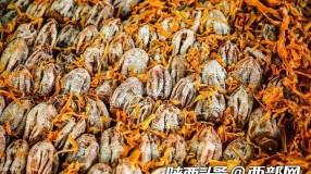 """京东在陕西打造""""年货村"""" 为村民打开柿饼销路"""