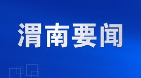《省生态环境保护督察》临渭区现场督办省生态环境保护督察交办信访问题