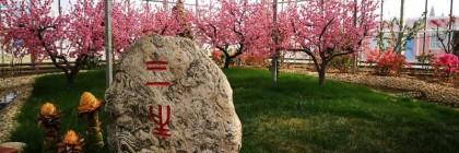 渭南竟然有这么美的温室花园 你知道吗?
