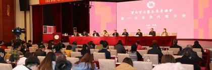 喜讯!渭南市文艺志愿者协会正式成立