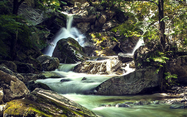 陕西太平森林公园和朱雀国家森林公园哪个好玩