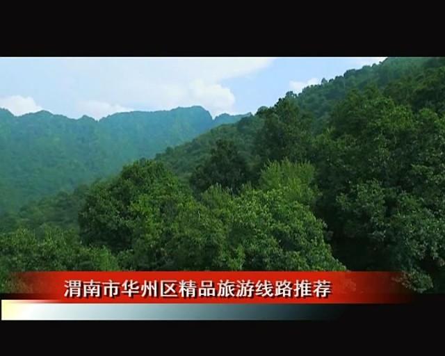 樱桃沟的秀美,桥峪森林公园的绚丽,无不展现着人杰地灵的华州风采.
