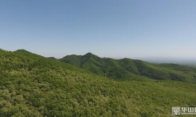 《瞰渭南》白水:五月槐香满方山