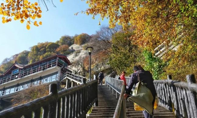 秋日,来一场与绚丽华山的美好相遇