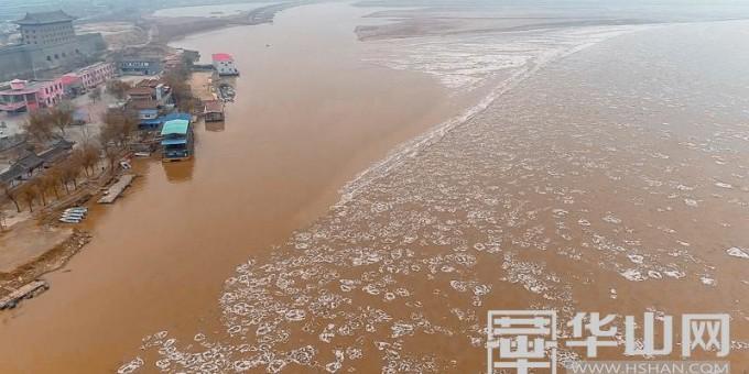 连续低温天气影响 黄河渭南段出现大面积流凌现象