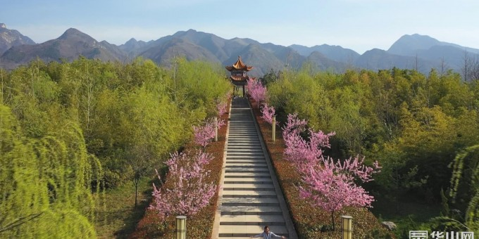 《瞰渭南》春风拂面景如画 百花争春韵味浓