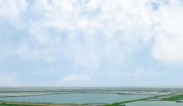 层峦叠翠 水波潋滟——渭南黄河流域生态保护见闻