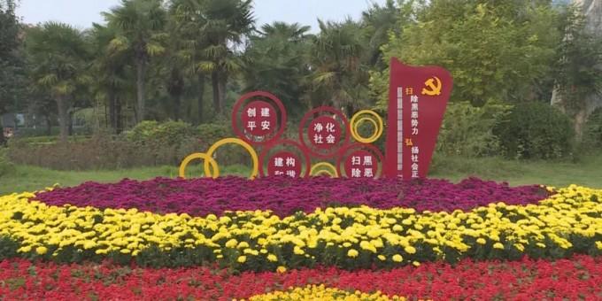 渭南城区鲜花扮靓城市 姹紫嫣红喜迎佳节