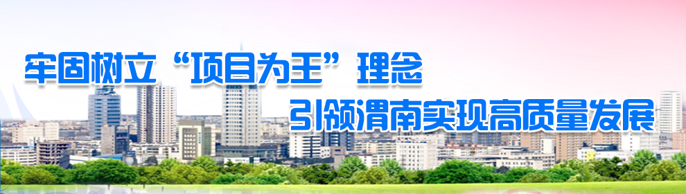 """牢固树立""""项目为王""""理念  引领渭南实现高质量发展"""