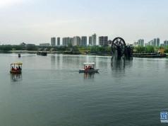 富平石川河:碧波荡漾 鸟语花香