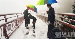 渭南迎来今冬第一场雪 网友发图晒大美雪景(高清组照)