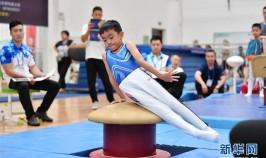 体操——萌娃赛体操