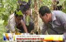 《百姓问政》问政市农业局回复: 蒲城县农业局对存在问题进行集中整改