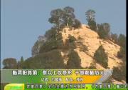 临渭阳郭镇:群众上坟祭祀 干部跟随防火