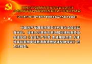 中国共产党渭南市第五次代表大会关于中共渭南市第四届纪律检查委员会工作报告的决议
