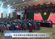 市五次党代会主席团举行第三次会议