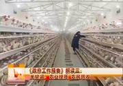 《政府工作报告》解读三:农业体质 农民增收