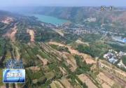 市林业局:加快生态文明建设 打造绿色园林渭南