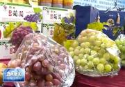 """渭南特色果品推介会在京举行 我市被授予""""中国优质果品示范基地""""称号"""