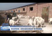 蒲城县桥陵镇:发挥村级党支部优势 助力群众脱贫
