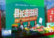 """渭南市""""促消费 惠民生 助脱贫""""系列活动成功举行"""