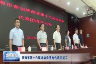 陕西省第十六届运动会渭南代表团成立