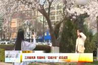 """三月春风来 市园林处""""花城计划""""初见成效"""