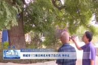 """韓城市172株古樹名木有了自己的""""身份證"""""""