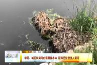 華陰:城區長澗河內現黑臭水體 疑似無處理流入渭河