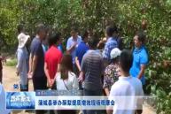 蒲城县举办酥梨提质增效现场观摩会