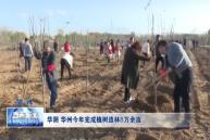 华阴 华州今年完成植树造林8万余亩