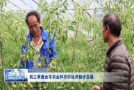 前三季度全市农业和农村经济稳步发展