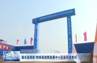 """潼关倒荣获""""陕西省加快发展中小企业先进单位"""""""
