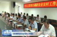 马赟调研渭南市农业农村工作情况