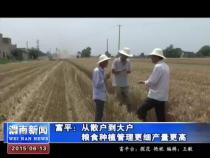 富平:从散户到大户粮食种植管理更细产量更高