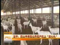 """富平:奶山羊保险让养殖户吃上""""定心丸"""""""