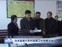 白水县举行农村党建工作观摩活动