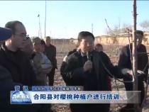 合阳县对樱桃种植户进行培训