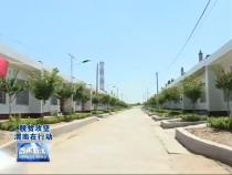 华阴市葱兴村:用移民搬迁和香椿产业撑起村民的明天