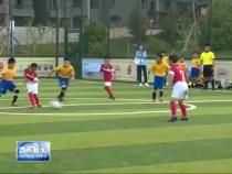 """2016""""未来之星""""黄河金三角青少年足球赛在韩城开赛"""