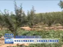 华州区大明镇水渠村:分类施策助力精准扶贫