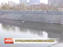 富平温泉河湿地公园迎来白鹭栖息