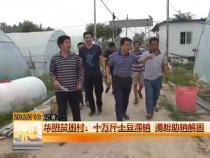 华阴贫困村:十万斤土豆滞销 渴盼助销解困