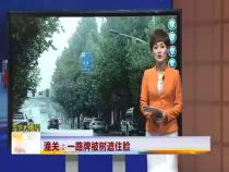 《百姓大爆料》潼关:一路牌被树遮住脸