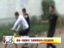 蒲城一网瘾青年  为筹网费抢夺小学生被刑拘