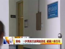 蒲城:14岁男孩沉迷网络游戏 被骗20余万元