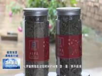 白水阿东村第一书记武博敏:创新求变 小野菜也能富乡亲