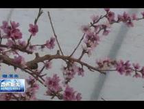 渭南新闻3月5日